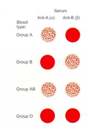 blood donation research paper